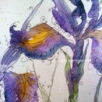 Close up of wild iris art by Sophie Huddlestone